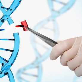 The Damnable Vaccine: The Mark of the Beast and Noah's DNA