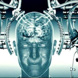 brain linked to quantum computer